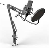 Микрофон Ritmix RDM-169 USB