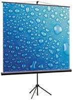 Рулонный матовый экран ViewScreen Clamp TCL-1101