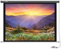 Рулонный матовый экран cactus Professional Motoscreen CS-PSPM-149x265