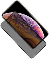 Защитное стекло на экран GCR для APPLE iPhone 10 Антишпион GCR-53319 APPLE iPhone 10 GCR-53319