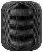 Apple HomePod Space