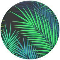 Кольцо-держатель для телефона Popsockets Midnight Palms (800165)