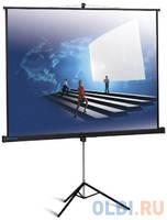 .NoBrand Экран переносной на штативе Classic Solution Libra T180x180/1MW-LS/B 180 x 180 см
