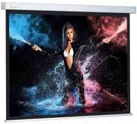 Экран для проектора Cactus CS-PSW-180x180 1:1 настенно-потолочный
