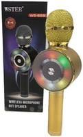 Беспроводной караоке-микрофон WS-669