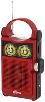 Радиоприемник Ritmix RPR-303
