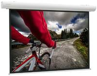 Экран для проектора Projecta Elpro Concept (16:10) 153 216x340 Matte