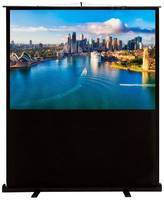 Экран Cactus CS-PSFLCE-160X120